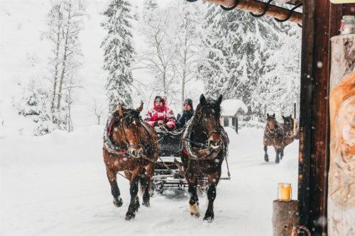 ritzenhofmoment-veranstaltung-pferdeschlittenfahrt